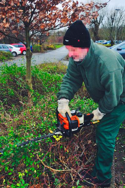 Gärtnerdienste